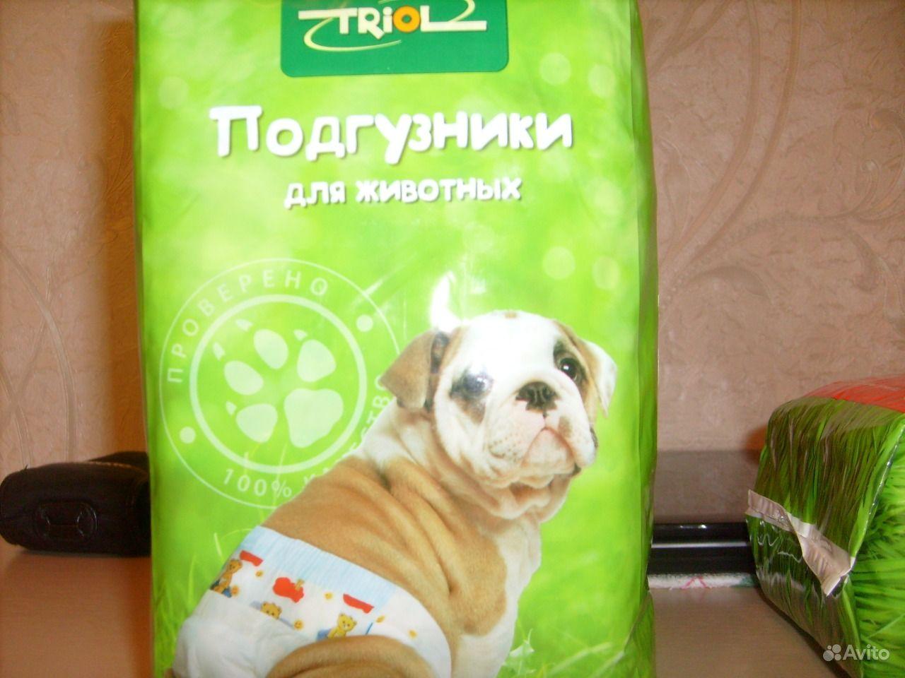 Памперсы для собаки. Республика Коми,  Сыктывкар