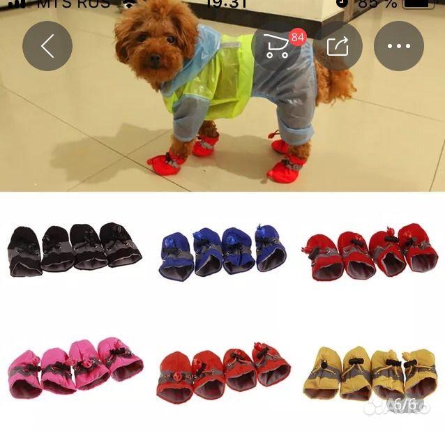 Обувь для собак в Нягани - фотография № 1