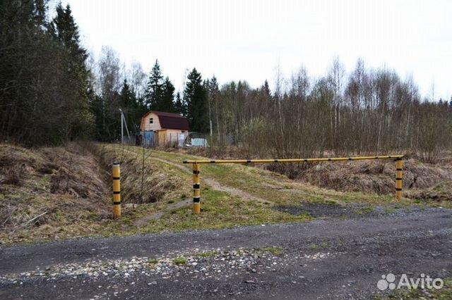 Купить землю сельхозназначения в шаховском районе