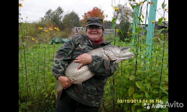 насадка для рыбалки в карелии