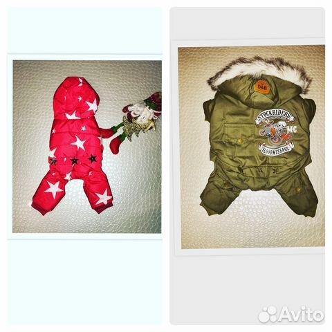 915d32869f784 Одежда для собак - купить, продать или отдать в Саратовской области ...