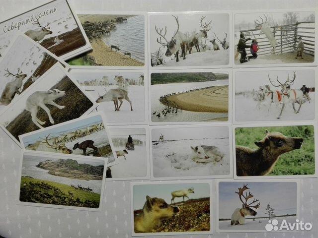 Набор открыток природа россии, открытка день