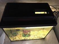 Аквариум 25 литров с оборудованием и рыбками