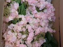 Цветы из экосиликона и сенсорного латекса — Растения в Саратове