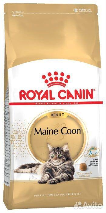 Корм для кошек Royal Canin Adult Мейн-кун 4 кг  89203652500 купить 1